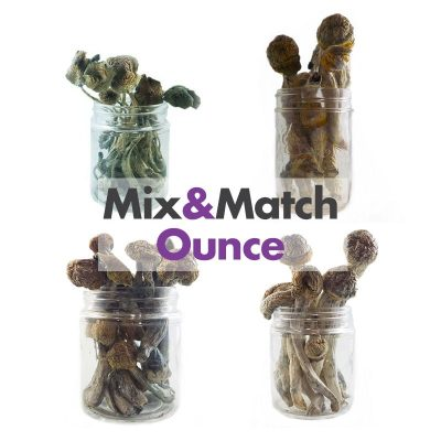 Mix And Match Magic Mushroom Ounces